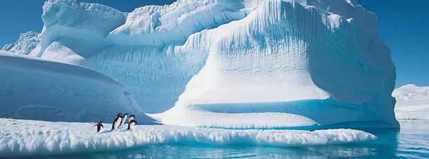 silverseas-cruises-antarctica