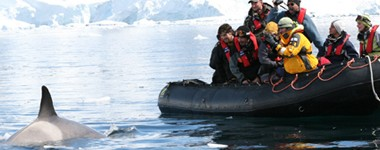 Fly over the Drake Passage & Cruise Antarctica with Antarctica XXI